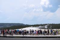 Yellowstone National Park vol.1 - flavor of my life