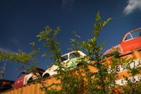 夏の太陽に炙られるチンクェチェント - Soul Eyes