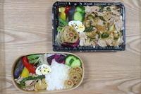 生姜焼きのお弁当(*´∀`) - オヤコベントウ