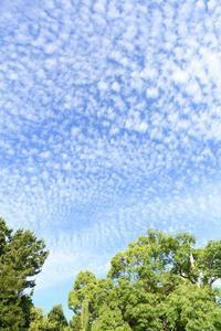 青と藍色 - 写真家 田島源夫ブログ『しゃごころでっしゃろ!』