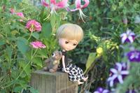 百合 - マミィの花と手づくりの時間