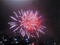 花火写真と円形の花々 - 活花生活(2)