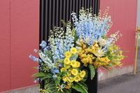 お届けしたお祝いのお花~デニステンさまへ - [花灯-hanabi-] 栃木県宇都宮市の花屋です