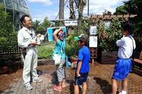 「夏休み探検ツアー!」 - 手柄山温室植物園ブログ 『山の上から花だより』