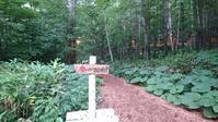 森の時計とニングルテラス - のんびりタルトパイ日記