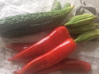 夏野菜 - 鴻池新田駅から徒歩3分 和食と自家焙煎珈琲 コトリ