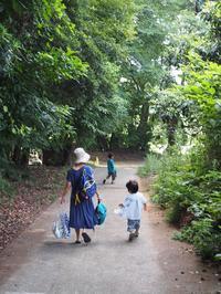 夏休みのカービィー - 能古島の歩き方