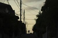 夕方の散歩(4cut) -     ~風に乗って~    Present
