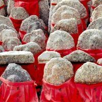 墓掃除する人 - 鯵庵の京都事情