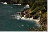 台風一過の7日 - ハチミツの海を渡る風の音