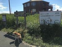 《地元訪問レポート》誕生日デート♪in石狩(前編) - 柴犬さくら、北国に生きる