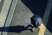 黒い日傘 - *Any*