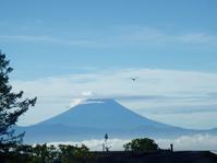 久々の富士山 - 冬青窯八ヶ岳便り