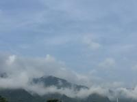 万緑のベランダと台湾ラーメンこころ - はまあやのくらし