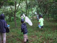 夏のスペシャルウィーク・さとの夏遊び3日目 - 千葉県いすみ環境と文化のさとセンター