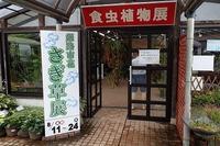 『市花さぎ草展』開催中! - 手柄山温室植物園ブログ 『山の上から花だより』