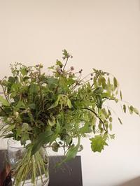 2017.8.7のブーケ - 暮らしと植物のブログ