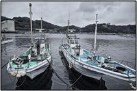 漁港の風景 - コバチャンのBLOG