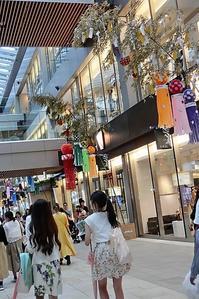 藤田八束の鉄道写真@地方創生と鉄道、鉄道事業が街の活性化に必要なわけ - 藤田八束の日記
