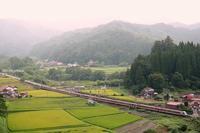 本降りの山間を往く。 - 山陽路を往く列車たち
