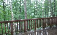 雨天決行 - あの日、あの時、あの場所で