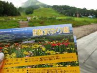 嬬恋 鹿沢ゆり園*この夏で閉園! - ぴきょログ~軽井沢でぐーたら生活~