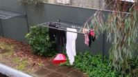 続・洗濯物の行方 - アデレードの片隅で2