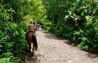 馬に乗って古代ハワイへ - 空想地球旅行