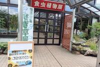 夏休みイベント「森のクラフト作り」 - 手柄山温室植物園ブログ 『山の上から花だより』