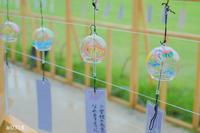 かわいい風鈴。 - Yuruyuru Photograph