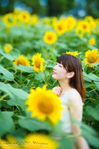 sun flower 1 - naco #127 - Mi-yan's PHOTO LIFE blog [PORTRAIT]