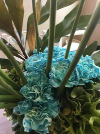 青いカーネーションby bianca NAGOYA - 名古屋の花屋BIANCA(SHUZO)のブログ