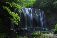 達沢不動滝1 - Patrappi annex