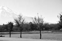 蜩の月 寫誌 ⑨ SPP6.3で季節はずれの富士を… - le fotografie di digit@l
