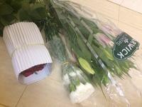 花市場へ - Blue Lotus