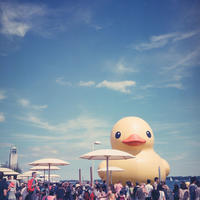 Rubber Duck - ∞ infinity ∞