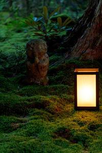 三千院万灯会 - 花景色-K.W.C. PhotoBlog