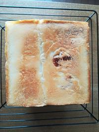 3種のチーズ角食パン - 空を見上げて