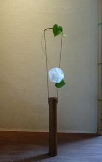 夏の花 - g's style day by day ー京都嵐山から、季節を楽しむ日々をお届けしますー