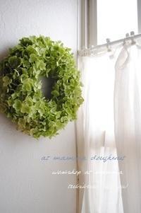 アナベルのリースを作りましょう @mamma - つきくさ帖   草花とおして、毎日とくべつ