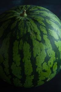 8月14日(月)くもり25//23℃ - 日々の皿
