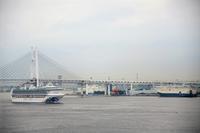 横浜港シンボルタワーから眺めるダイヤモンドプリンセス - 一期一絵