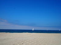 ロサンゼルスは夏らしい天気がつづいています^^ - MG Diary