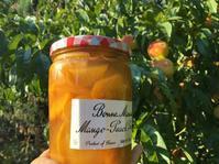 桃の収穫でコンポート(のような物) - ちょっと田舎暮しCalifornia
