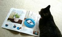 すてきにハンドメイドを読みながら - 空色テーブル  編み物レッスン&編み物カフェ
