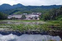 蓮池(志賀高原) - くろちゃんの写真
