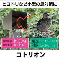 農園のヒヨドリ対策 - 鳥獣対策「人と動物の棲み分けを目指して」 byサウンズ情報部