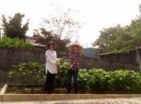 8月27日(日)&28日(月)は営業!丹波篠山・自家畑の初収穫野菜がお味噌汁に登場します♪ - miso汁香房(ロジの木)