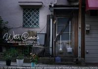 Scenery or Still ?  sony α7R II + ZEISS Loxia 2/50で撮る、風景の中の静物写真。 - 東京女子フォトレッスンサロン『ラ・フォト自由が丘』-写真とフォントとデザインと現像と-