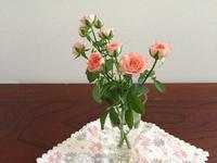 卓上のバラ達と読書記録 - はまあやのくらし
